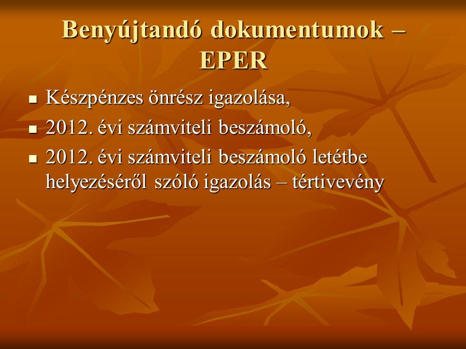 Benyújtandó dokumentumok – EPER Készpénzes önrész igazolása, Készpénzes önrész igazolása, 2012. évi számviteli beszámoló, 2012. évi számviteli beszámo