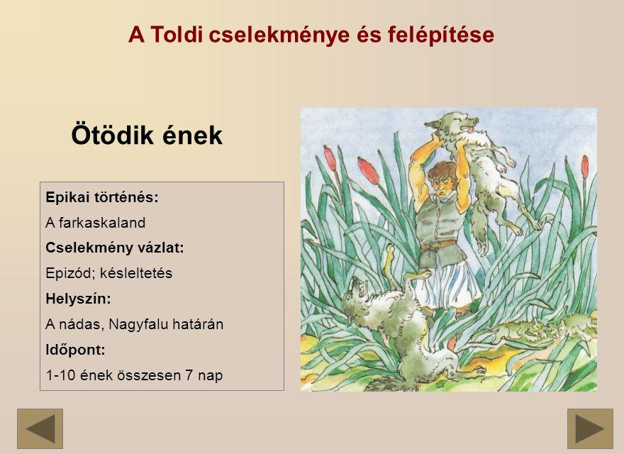 A Toldi cselekménye és felépítése Ötödik ének Epikai történés: A farkaskaland Cselekmény vázlat: Epizód; késleltetés Helyszín: A nádas, Nagyfalu határán Időpont: 1-10 ének összesen 7 nap
