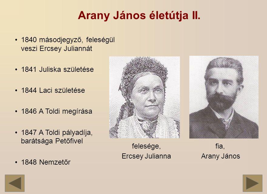 Arany János életútja II.