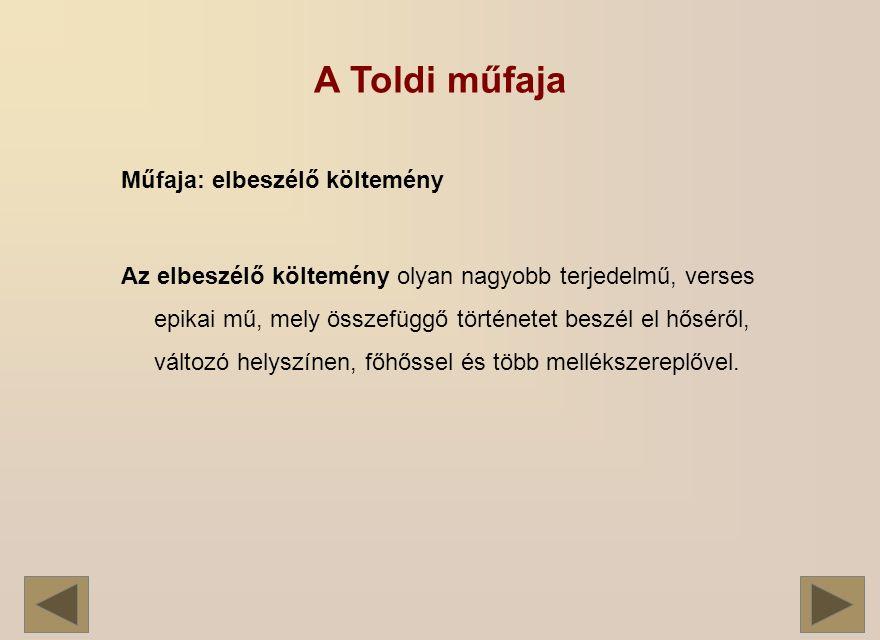 A Toldi műfaja Műfaja: elbeszélő költemény Az elbeszélő költemény olyan nagyobb terjedelmű, verses epikai mű, mely összefüggő történetet beszél el hőséről, változó helyszínen, főhőssel és több mellékszereplővel.