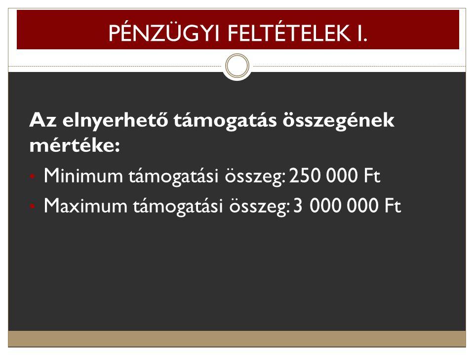 PÉNZÜGYI FELTÉTELEK I. Az elnyerhető támogatás összegének mértéke: Minimum támogatási összeg: 250 000 Ft Maximum támogatási összeg: 3 000 000 Ft