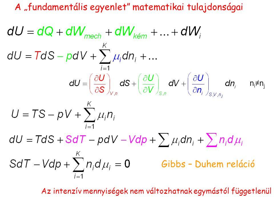 """n i ≠n j Gibbs – Duhem reláció A """"fundamentális egyenlet matematikai tulajdonságai Az intenzív mennyiségek nem változhatnak egymástól függetlenül"""