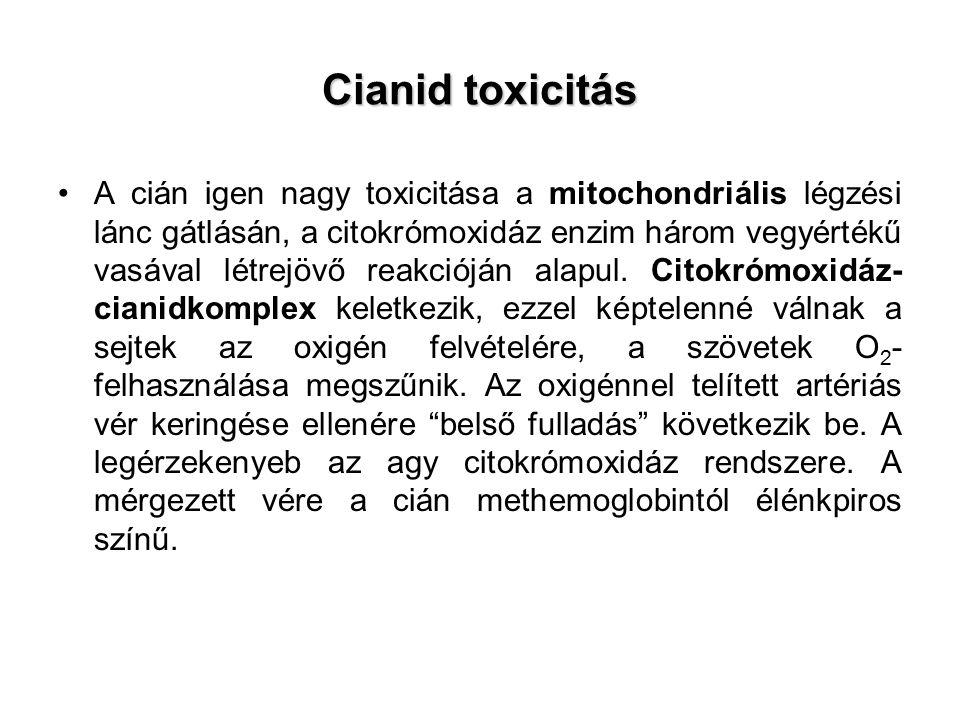 Cianid toxicitás A cián igen nagy toxicitása a mitochondriális légzési lánc gátlásán, a citokrómoxidáz enzim három vegyértékű vasával létrejövő reakcióján alapul.