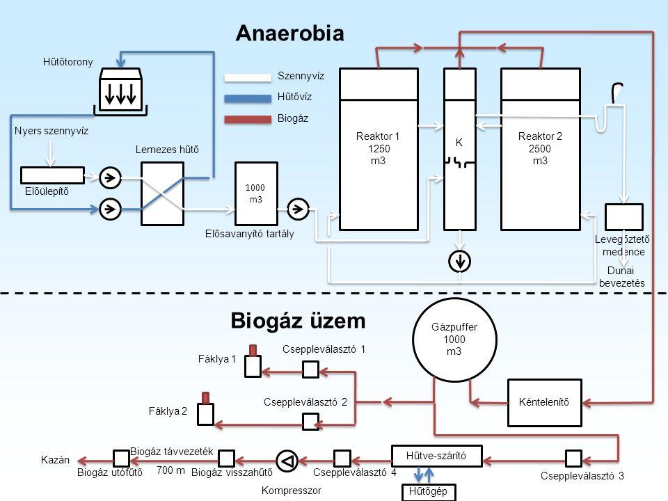 Hűtőtorony Lemezes hűtő 1000 m3 Reaktor 1 1250 m3 Reaktor 2 2500 m3 K Kéntelenítő Gázpuffer 1000 m3 Kazán Hűtve-szárító Kompresszor Fáklya 1 Fáklya 2 Anaerobia Szennyvíz Hűtővíz Biogáz Előülepítő Elősavanyító tartály Levegőztető medence Nyers szennyvíz Dunai bevezetés Cseppleválasztó 1 Cseppleválasztó 2 Cseppleválasztó 3 Cseppleválasztó 4Biogáz visszahűtő Biogáz távvezeték 700 m Biogáz utófűtő Hűtőgép Biogáz üzem