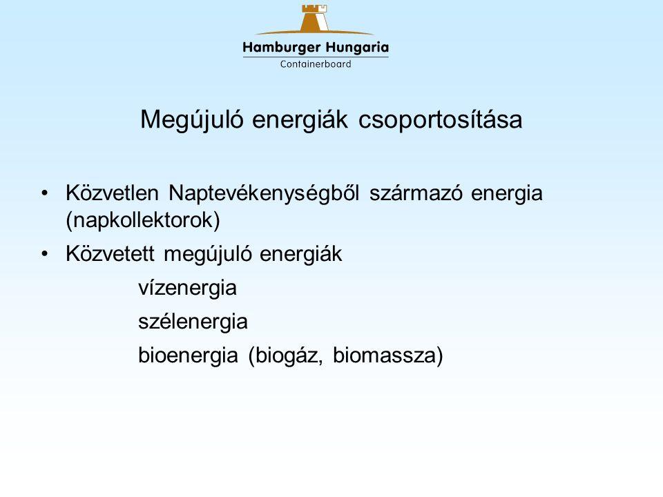 Megújuló energiák csoportosítása Közvetlen Naptevékenységből származó energia (napkollektorok) Közvetett megújuló energiák vízenergia szélenergia bioenergia (biogáz, biomassza)