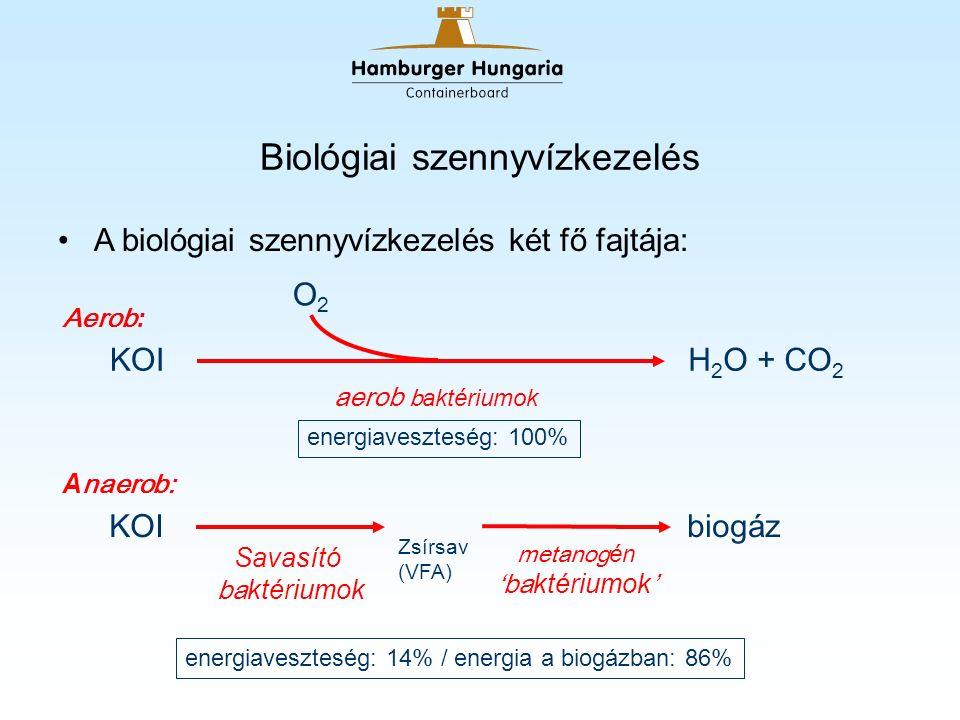 Biológiai szennyvízkezelés A biológiai szennyvízkezelés két fő fajtája: H 2 O + CO 2 O2O2 KOI biog áz Savasító ba ktériumok metanog én 'ba ktériumok ' Zsírsav (VFA) aerob b aktériumok energiaveszteség: 100% energiaveszteség: 14% / energia a biogázban: 86% Aerob : A naerob: