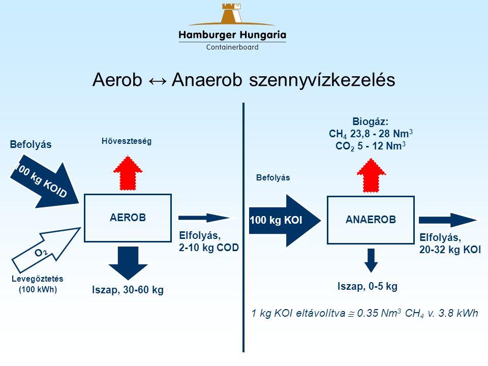 1.Hidrolízis nagy molekulák kis molekulák 2. Savasodás (acidogenezis) kis molekulák VFA 3.
