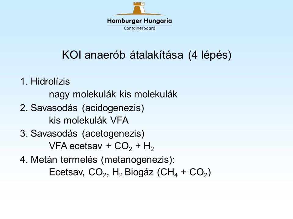 Biogáz fáklyák