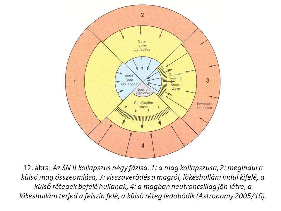 12. ábra: Az SN II kollapszus négy fázisa.