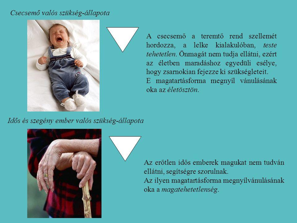 A csecsemő a teremtő rend szellemét hordozza, a lelke kialakulóban, teste tehetetlen.
