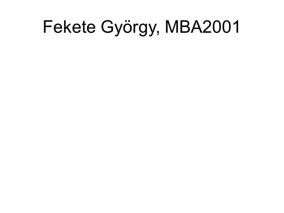 Fekete György, MBA2001
