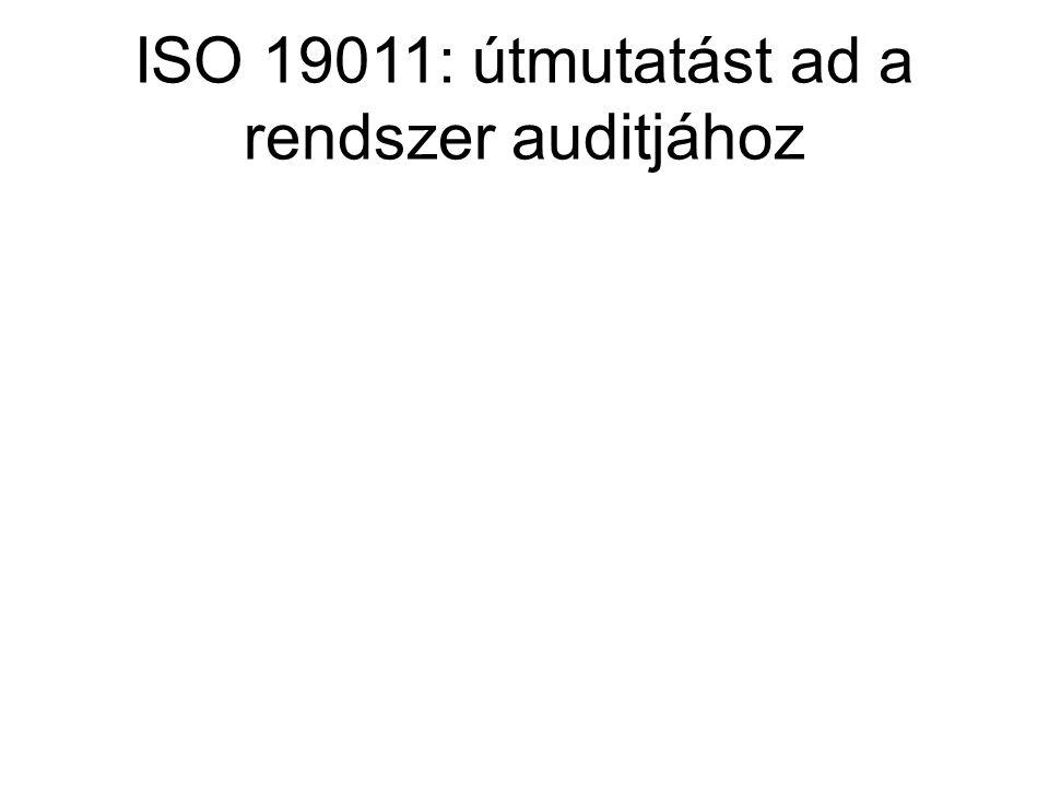 ISO 19011: útmutatást ad a rendszer auditjához