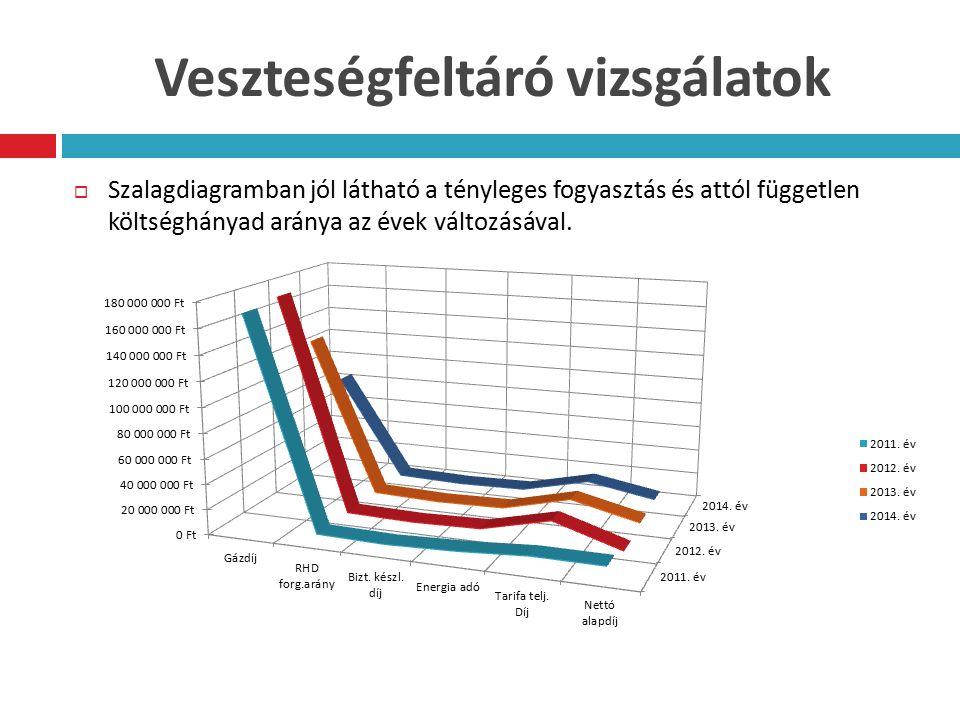 Veszteségfeltáró vizsgálatok  Szalagdiagramban jól látható a tényleges fogyasztás és attól független költséghányad aránya az évek változásával.
