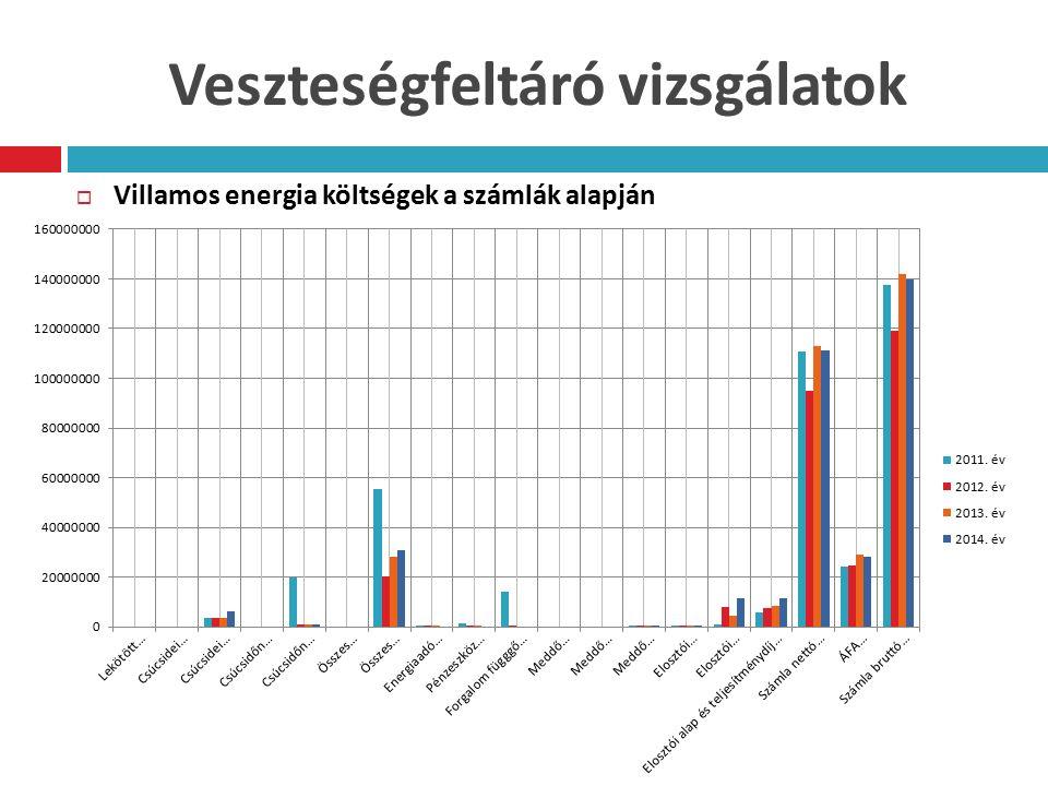 Veszteségfeltáró vizsgálatok  Villamos energia költségek a számlák alapján