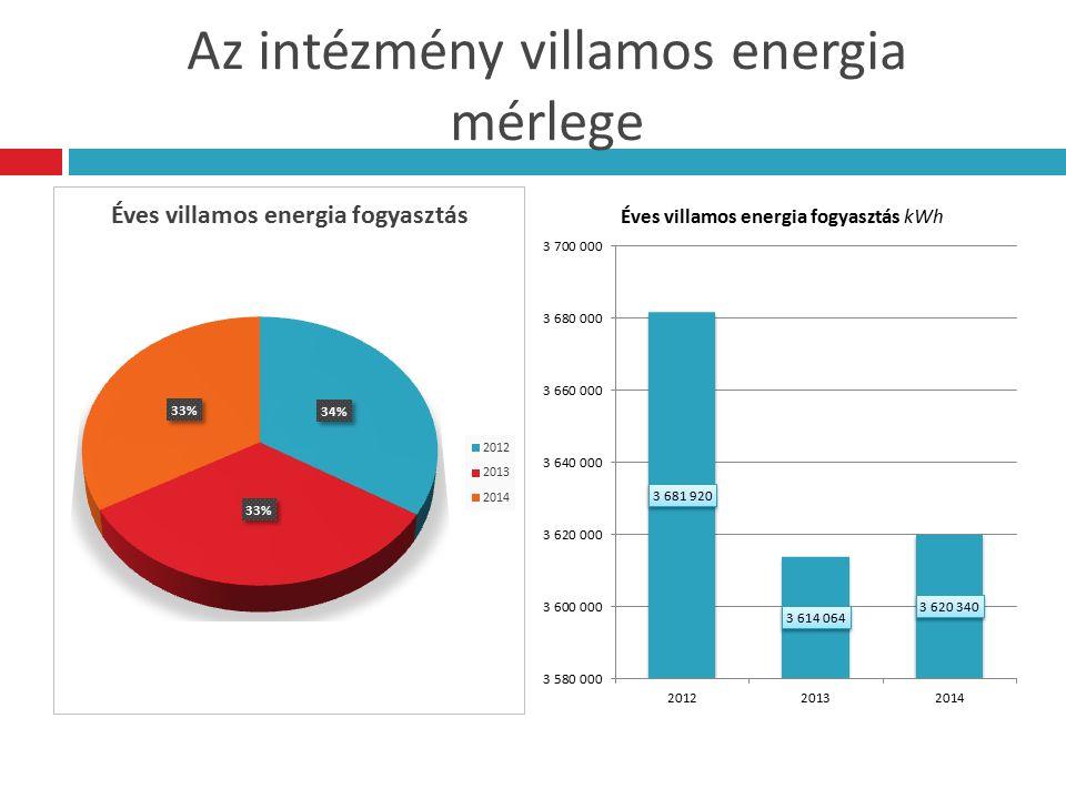 Az intézmény villamos energia mérlege