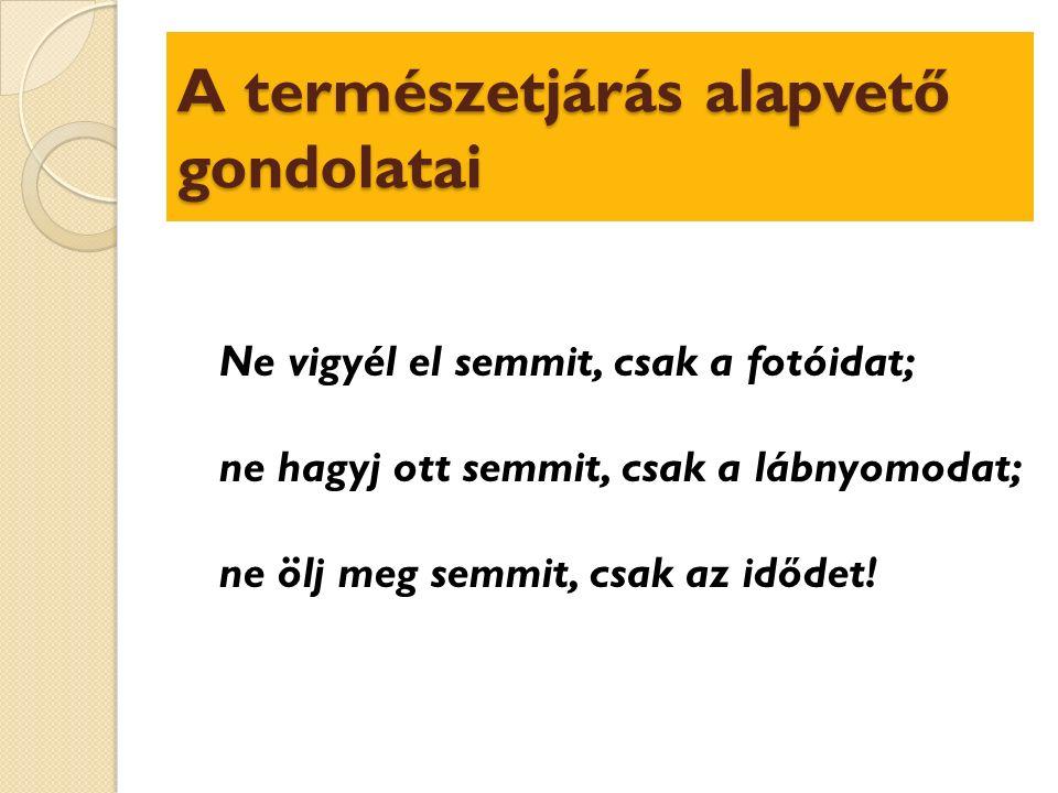 Mi a geocaching (geoládavadászat).