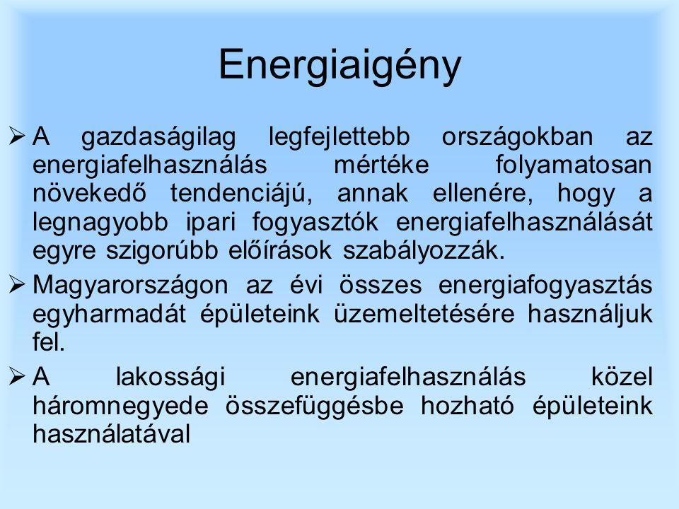 Energiaigény  A gazdaságilag legfejlettebb országokban az energiafelhasználás mértéke folyamatosan növekedő tendenciájú, annak ellenére, hogy a legnagyobb ipari fogyasztók energiafelhasználását egyre szigorúbb előírások szabályozzák.
