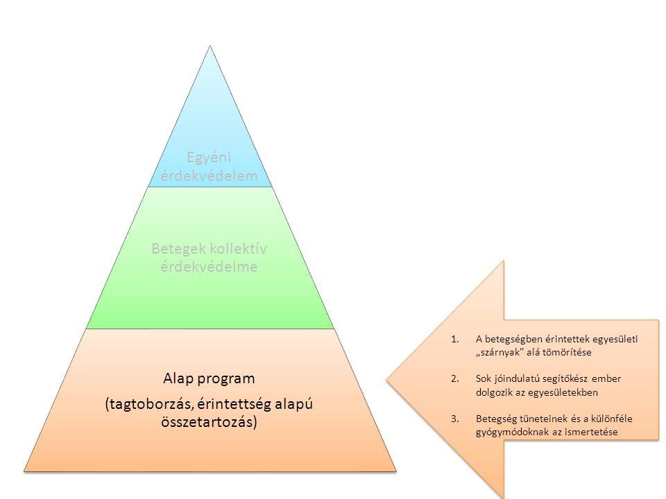 """Egyéni érdekvédelem Betegek kollektív érdekvédelme Alap program (tagtoborzás, érintettség alapú összetartozás) 1.A betegségben érintettek egyesületi """"szárnyak alá tömörítése 2.Sok jóindulatú segítőkész ember dolgozik az egyesületekben 3.Betegség tüneteinek és a különféle gyógymódoknak az ismertetése 1.A betegségben érintettek egyesületi """"szárnyak alá tömörítése 2.Sok jóindulatú segítőkész ember dolgozik az egyesületekben 3.Betegség tüneteinek és a különféle gyógymódoknak az ismertetése"""