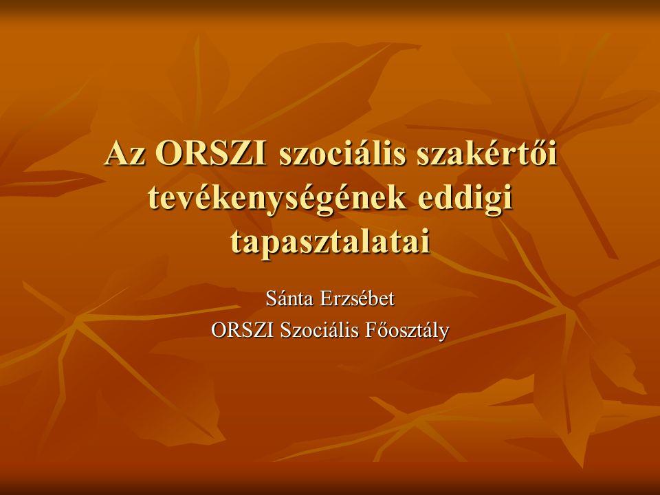 Az ORSZI szociális szakértői tevékenységének eddigi tapasztalatai Sánta Erzsébet ORSZI Szociális Főosztály