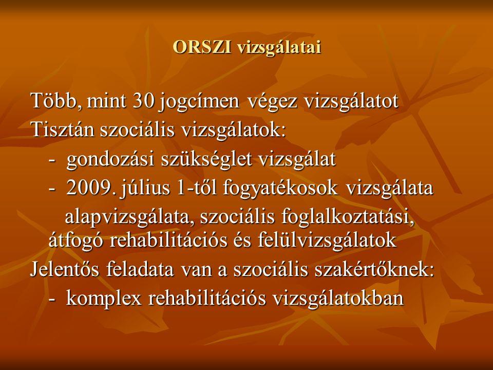 ORSZI vizsgálatai Több, mint 30 jogcímen végez vizsgálatot Tisztán szociális vizsgálatok: - gondozási szükséglet vizsgálat - 2009.