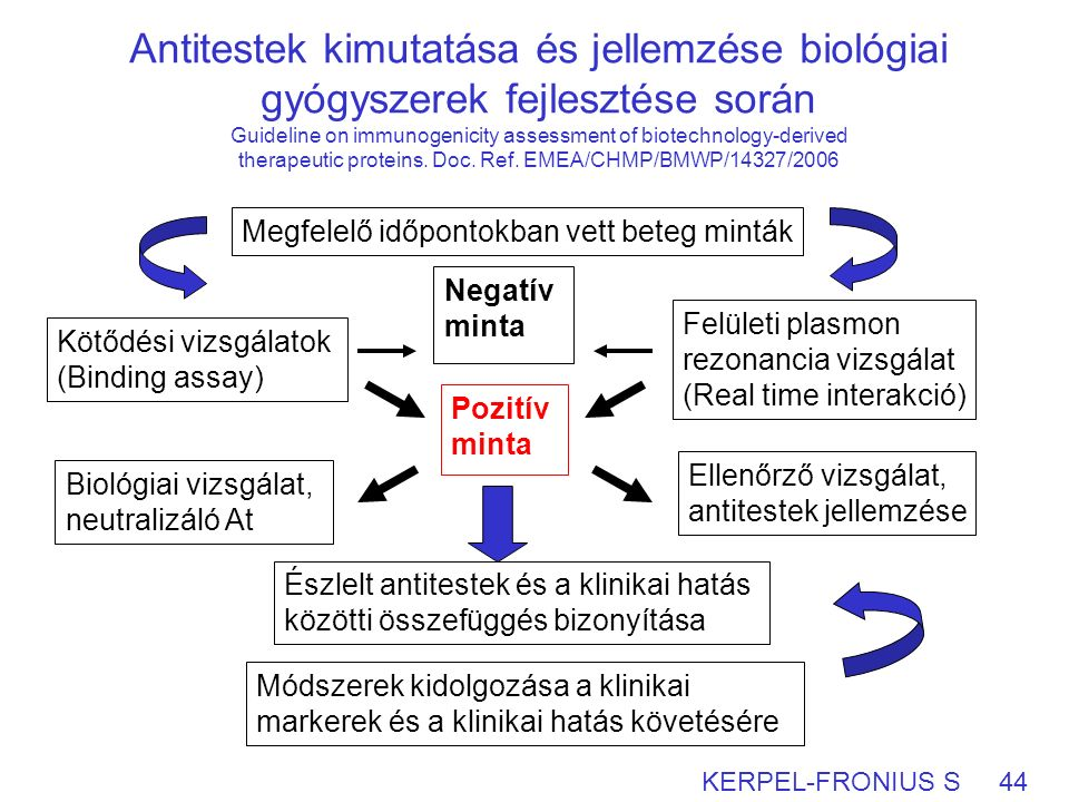Antitestek kimutatása és jellemzése biológiai gyógyszerek fejlesztése során Guideline on immunogenicity assessment of biotechnology-derived therapeutic proteins.