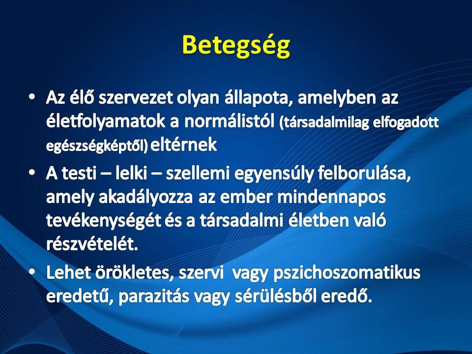 Demencia szindróma: