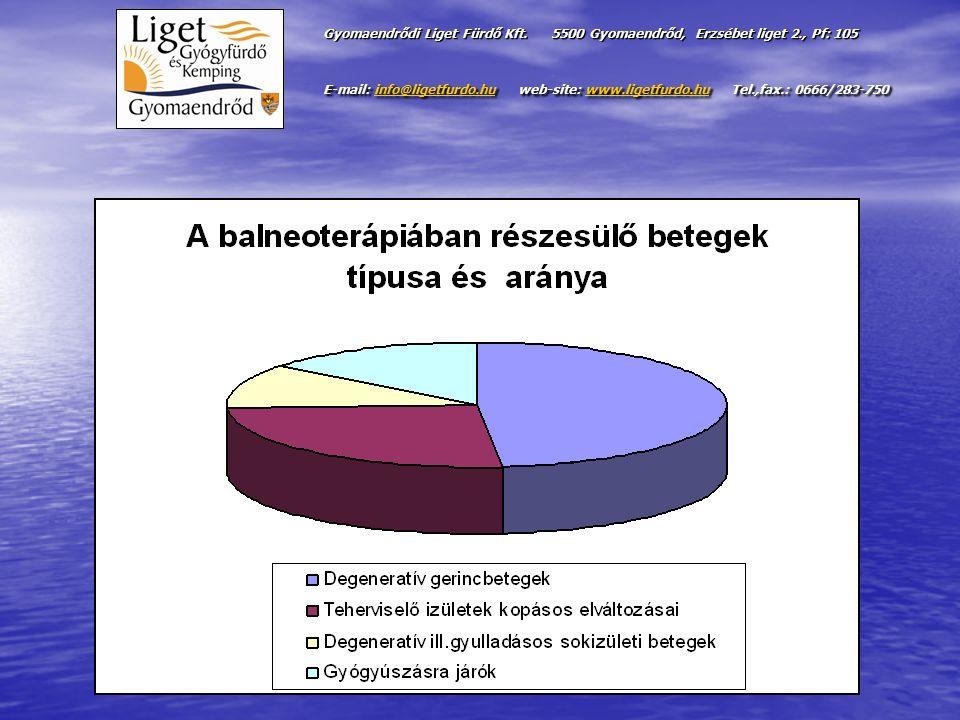 Gyomaendrődi Liget Fürdő Kft.