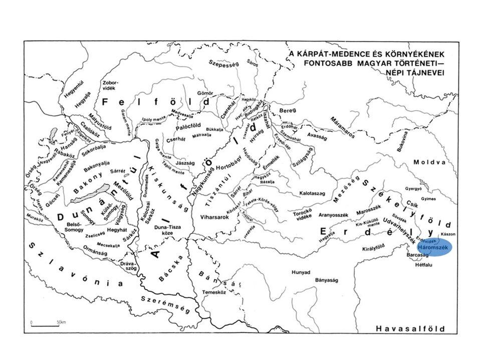 A zabolai-pávai cigányság  Albert Ernő, Kotics József és Pozsony Ferenc kutatásai alapján  A helyi cigánytársadalom hierarchikus szerveződésű.