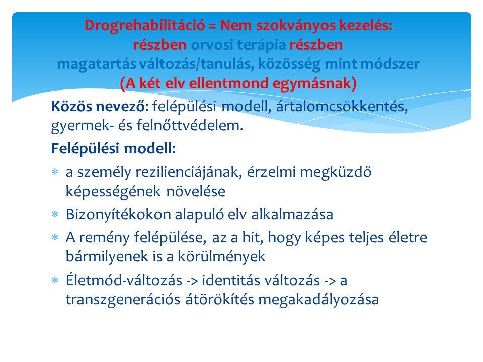 Boldog születésnapot a Kallódó Ifjúságot Mentő Misszió Támogató Alapítvány (KIMMTA) és a Zsibriki Drogterápiás Intézet minden tagjának 25 éves a KIMMTA