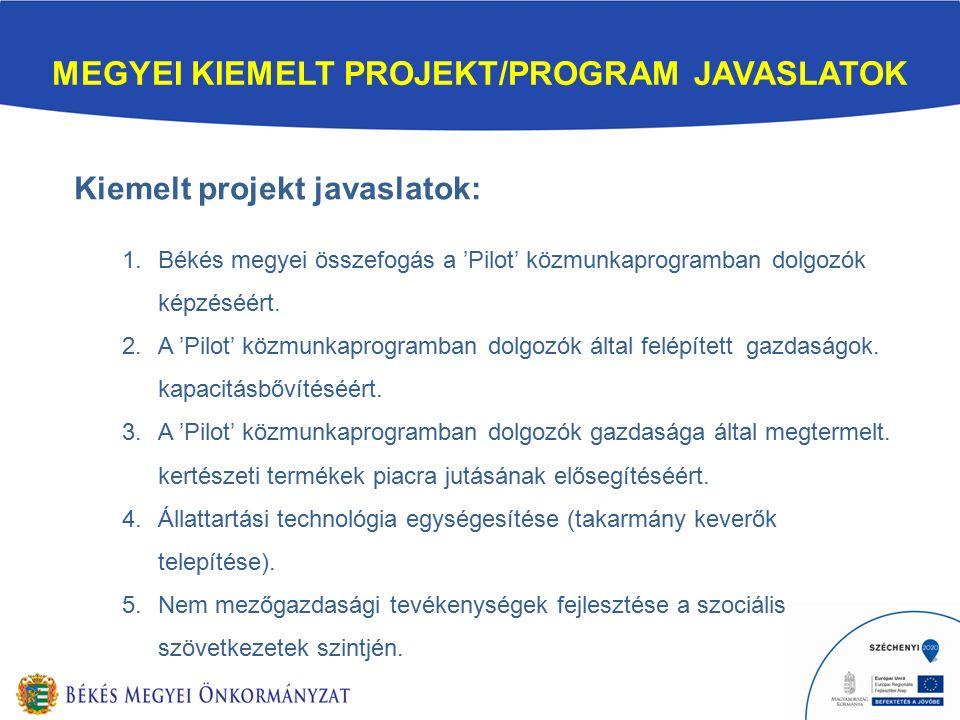 MEGYEI KIEMELT PROJEKT/PROGRAM JAVASLATOK Kiemelt projekt javaslatok: 1.Békés megyei összefogás a 'Pilot' közmunkaprogramban dolgozók képzéséért.