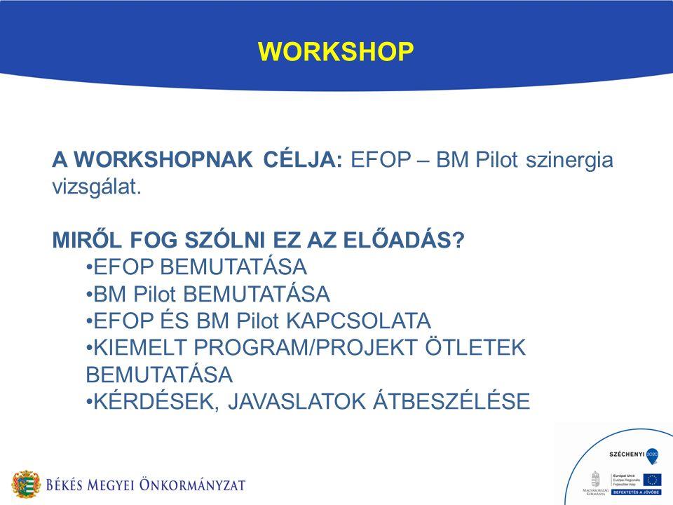WORKSHOP A WORKSHOPNAK CÉLJA: EFOP – BM Pilot szinergia vizsgálat.