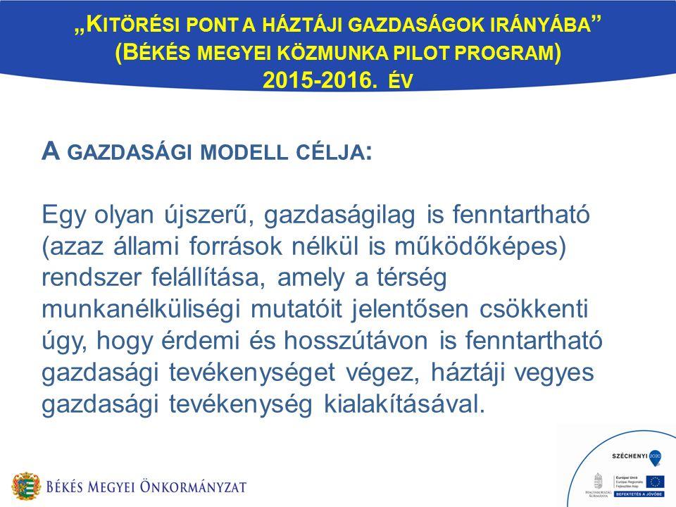 """""""K ITÖRÉSI PONT A HÁZTÁJI GAZDASÁGOK IRÁNYÁBA (B ÉKÉS MEGYEI KÖZMUNKA PILOT PROGRAM ) 2015-2016."""