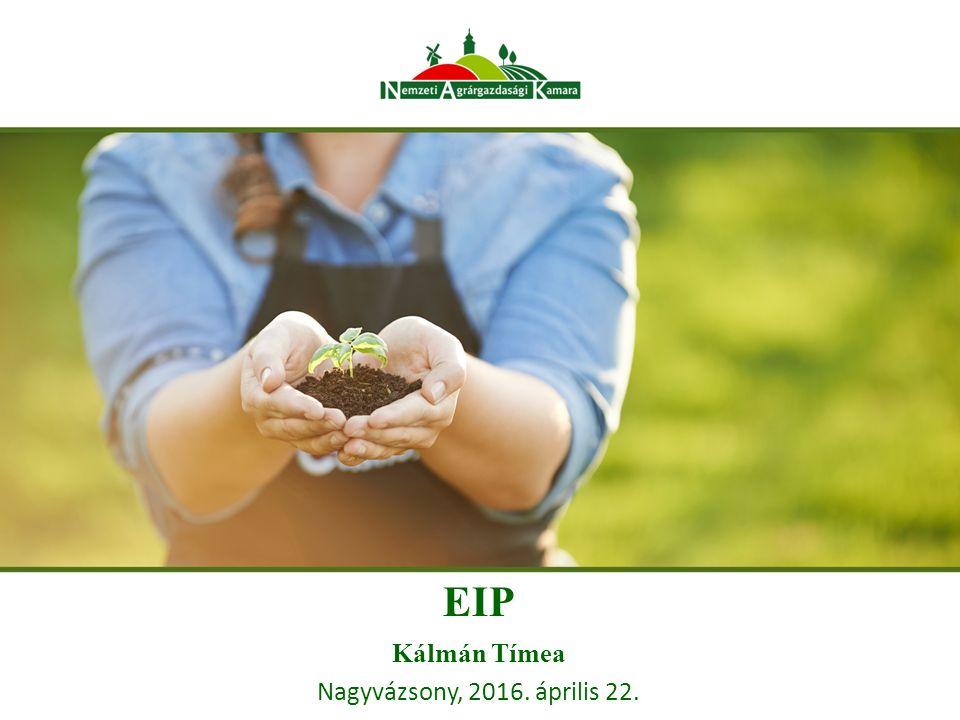 Európai Innovációs Partnerség (EIP) a VP-ben