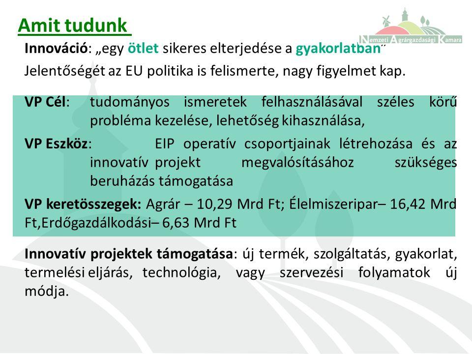 """Amit tudunk Innováció: """"egy ötlet sikeres elterjedése a gyakorlatban Jelentőségét az EU politika is felismerte, nagy figyelmet kap."""