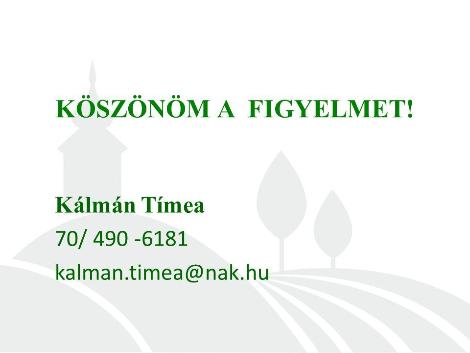 KÖSZÖNÖM A FIGYELMET! Kálmán Tímea 70/ 490 -6181 kalman.timea@nak.hu