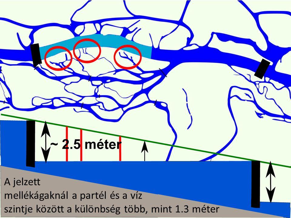 A jelzett mellékágaknál a partél és a víz szintje között a különbség több, mint 1.3 méter