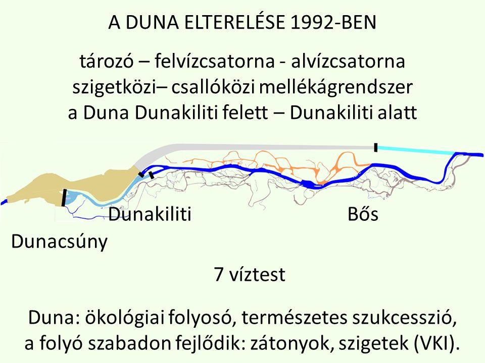 A DUNA ELTERELÉSE 1992-BEN tározó – felvízcsatorna - alvízcsatorna szigetközi– csallóközi mellékágrendszer a Duna Dunakiliti felett – Dunakiliti alatt Dunakiliti Bős Dunacsúny 7 víztest Duna: ökológiai folyosó, természetes szukcesszió, a folyó szabadon fejlődik: zátonyok, szigetek (VKI).