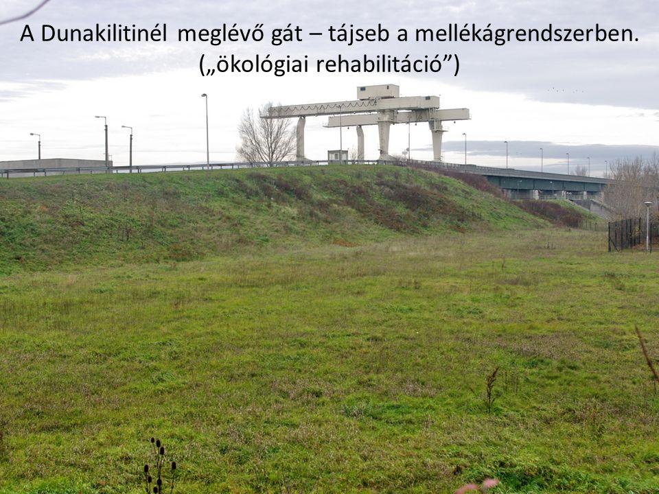 """A Dunakilitinél meglévő gát – tájseb a mellékágrendszerben. (""""ökológiai rehabilitáció )"""