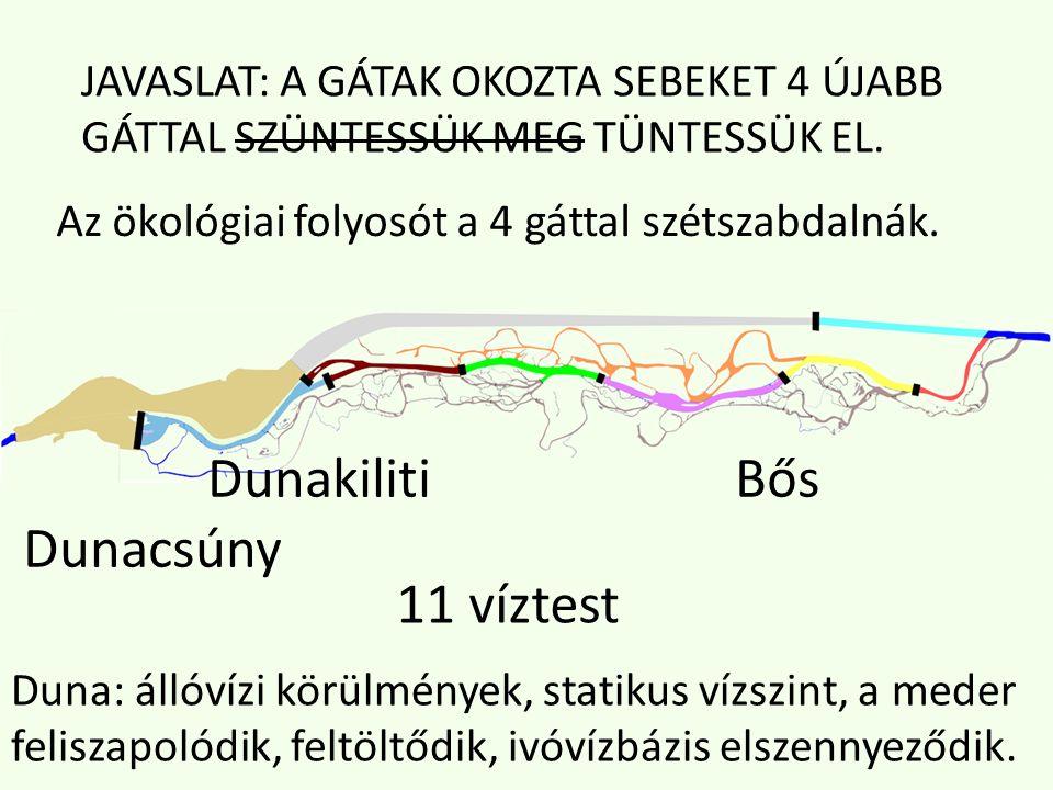 Dunakiliti Bős Dunacsúny 11 víztest Duna: állóvízi körülmények, statikus vízszint, a meder feliszapolódik, feltöltődik, ivóvízbázis elszennyeződik.