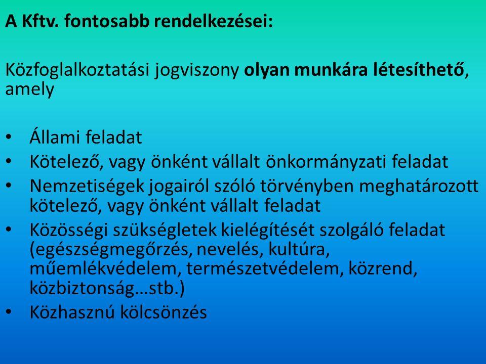 Közfoglalkoztató lehet: Helyi, nemzetiségi önkormányzat, valamint ezek jogi személyiséggel rendelkező társulásai Költségvetési szerv Egyház Közhasznú jogállású szervezet Civil szervezet Állami és önkormányzati tulajdon kezelésével megbízott gazdálkodó szervezet Vízitársulat Erdőgazdálkodó Szociális szövetkezet (2006.