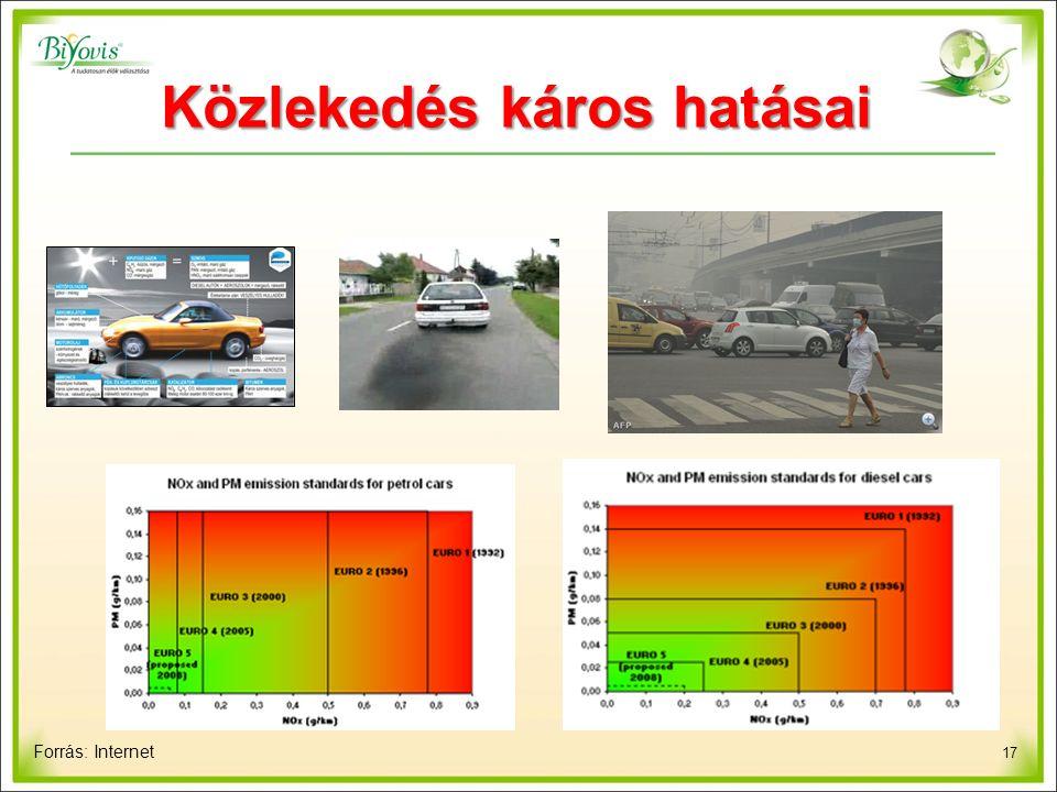 17 Közlekedés káros hatásai Forrás: Internet