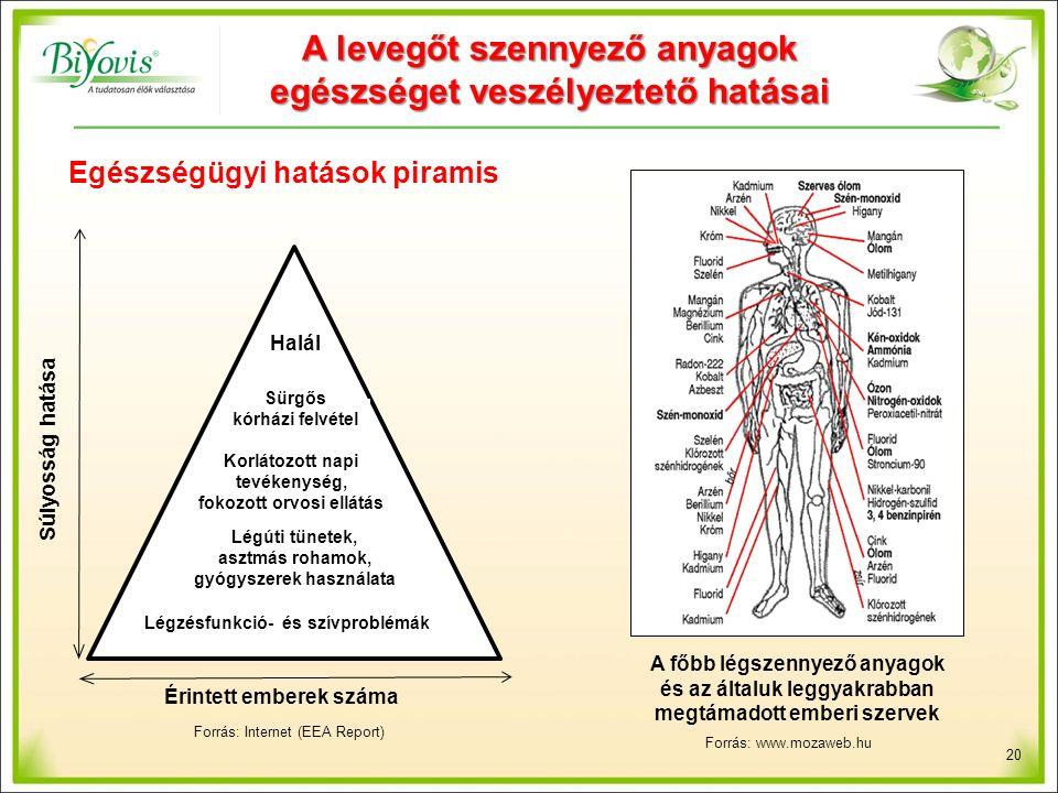 20 Halál Sürgős kórházi felvétel Korlátozott napi tevékenység, fokozott orvosi ellátás Légúti tünetek, asztmás rohamok, gyógyszerek használata Légzésfunkció- és szívproblémák Érintett emberek száma Súlyosság hatása Egészségügyi hatások piramis A levegőt szennyező anyagok egészséget veszélyeztető hatásai Forrás: Internet (EEA Report) A főbb légszennyező anyagok és az általuk leggyakrabban megtámadott emberi szervek Forrás: www.mozaweb.hu