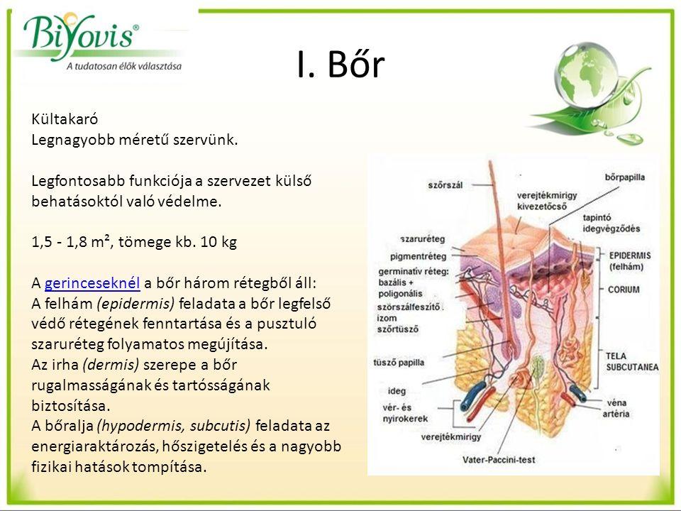 Oldószeres/vagy etanolos kivonatolás/ tinktúra készítés, mely eljárás során valamennyi szerves anyagot és vitaminokat kioldjuk a növényekből.