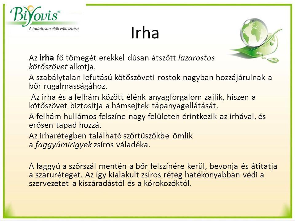 A gombák gyógyászati jelentősége Ígéretesek az egészség megőrzésében és a betegségek megelőzésében Jelenleg 140.