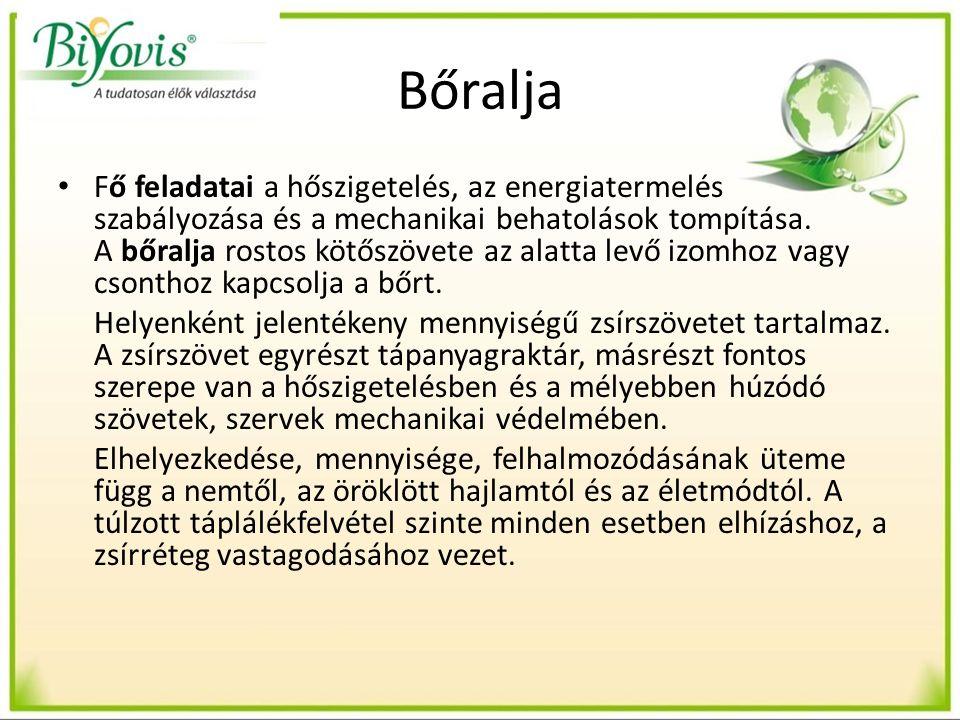 Gyógyhatású gombafajok Agaricus Blazei Murill – Himematsutake – Mandulagomba Reishi – Gandoderma lucidium – Pecsétviasz gomba Shiitake – Lentinula edodes- Illatos gomba (Lentinán, KS-2) Maitake – Grifola frondosa – Bokrosgomba (Maitake D-frakció) A százezres nagyságrendű fajt tartalmazó gombák közül ezt a négy fajt mutatjuk be.