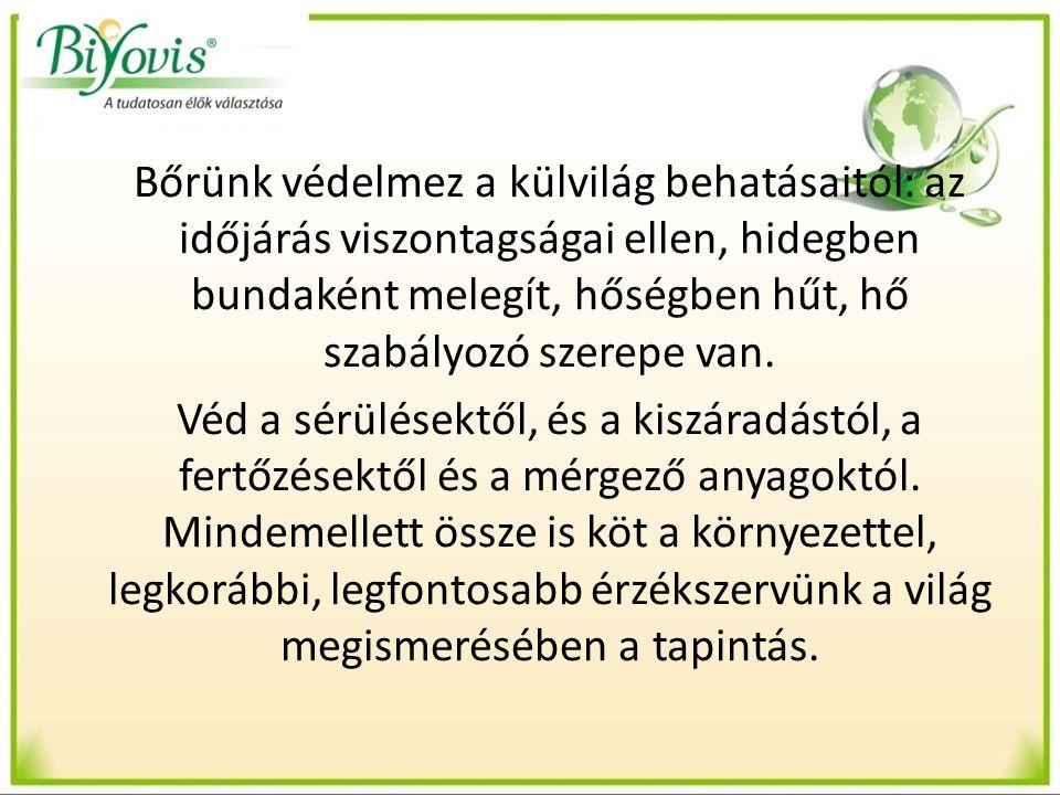 Bőr szerepe az immunrendszer működésében Védekezés Megakadályozza a szennyeződések, kórokozók bejutását Fontos a kézhigiénia!!!!