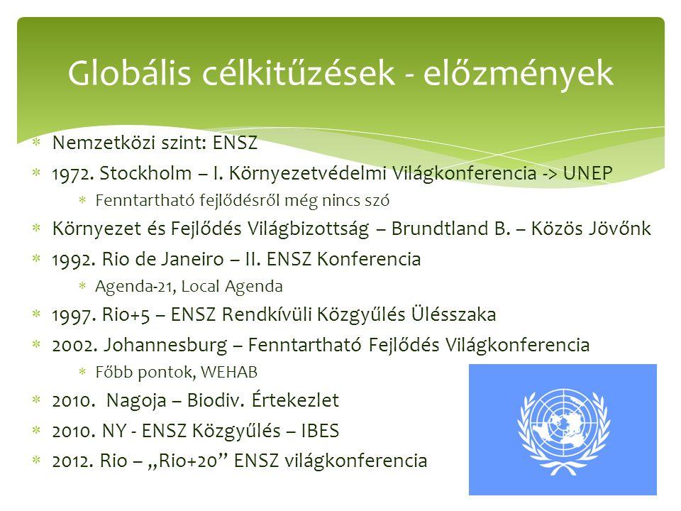  Nemzetközi szint: ENSZ  1972. Stockholm – I. Környezetvédelmi Világkonferencia -> UNEP  Fenntartható fejlődésről még nincs szó  Környezet és Fejl