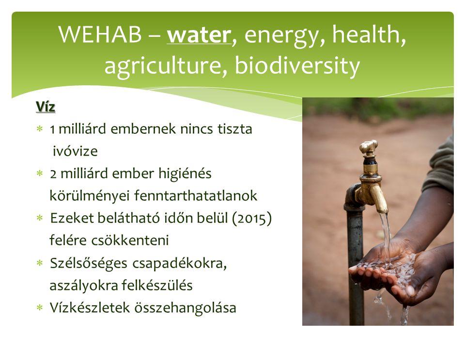 Víz  1 milliárd embernek nincs tiszta ivóvize  2 milliárd ember higiénés körülményei fenntarthatatlanok  Ezeket belátható időn belül (2015) felére csökkenteni  Szélsőséges csapadékokra, aszályokra felkészülés  Vízkészletek összehangolása WEHAB – water, energy, health, agriculture, biodiversity