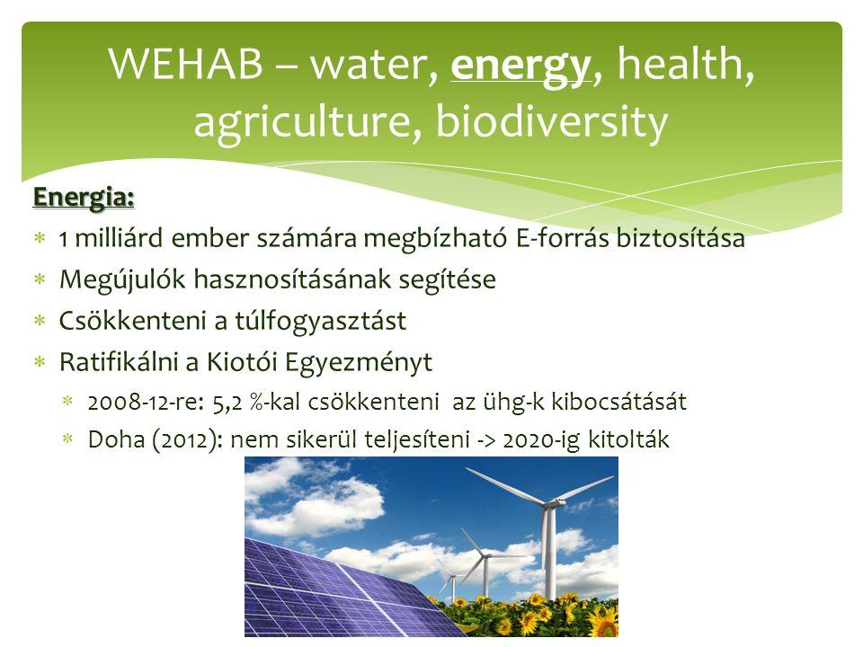 Energia:  1 milliárd ember számára megbízható E-forrás biztosítása  Megújulók hasznosításának segítése  Csökkenteni a túlfogyasztást  Ratifikálni a Kiotói Egyezményt  2008-12-re: 5,2 %-kal csökkenteni az ühg-k kibocsátását  Doha (2012): nem sikerül teljesíteni -> 2020-ig kitolták WEHAB – water, energy, health, agriculture, biodiversity