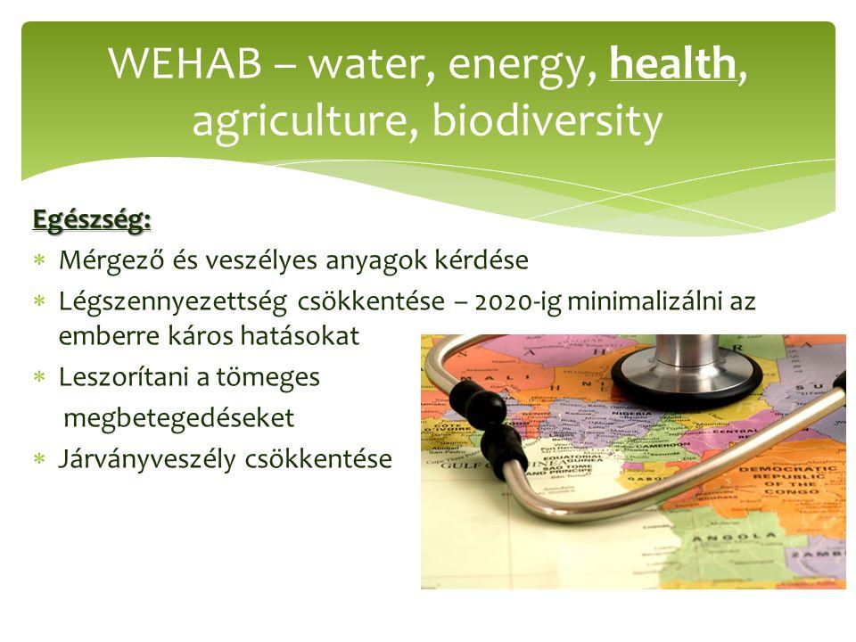 Egészség:  Mérgező és veszélyes anyagok kérdése  Légszennyezettség csökkentése – 2020-ig minimalizálni az emberre káros hatásokat  Leszorítani a tömeges megbetegedéseket  Járványveszély csökkentése WEHAB – water, energy, health, agriculture, biodiversity